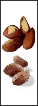 Brazil nuts are loaded with selenium and other minerals.