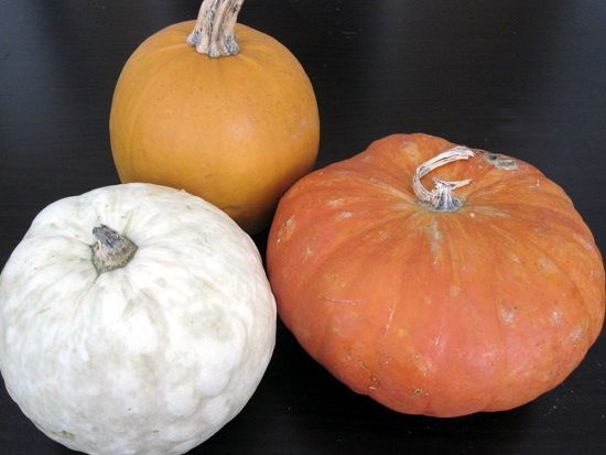 Pie pumpkins, in different sizes and colors, are all perfect for roasting and pureeing.