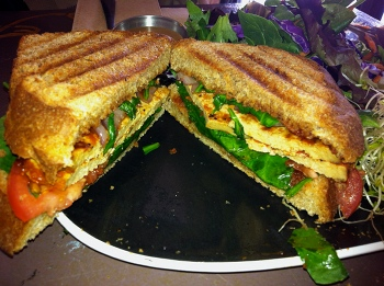 Maple BBQ tofu panini from Firestorm Cafe Asheville NC