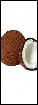 Coconuts are a member of the nut family, not the fruit.