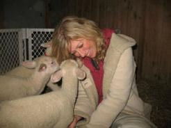 Colleen with lambs at an animal rescue.