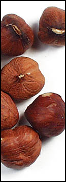 Hazelnuts give off an amazing aroma and are packed with vitamins and minerals.