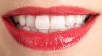 Humans have flat, thin teeth made for mashing and grinding grains and fresh produce.