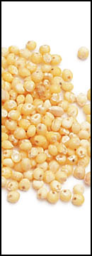 Millet is an ancient whole grain from China that is uncommon in the Western world but very common in the rest of the world.