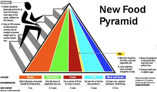 Worksheets Food Pyramid Guide new food pyramid guide created by usda