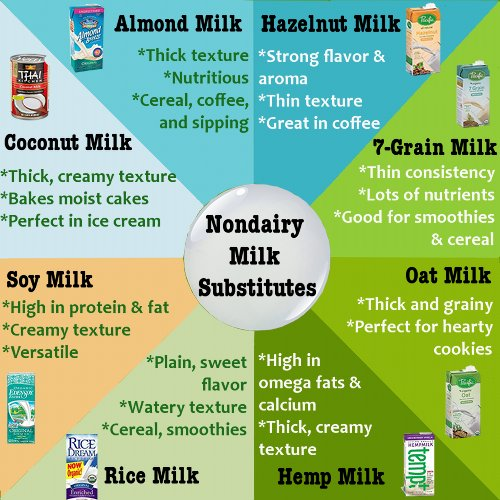 The 8 best nondairy milk substitutes for vegans and lactose intolerants. On the left are the most common milk replacements; almond milk, coconut milk, soy milk, and rice milk. On the right are lesser known options like hazelnut milk, 7-grain milk, oat milk, and hemp milk. The blue colors represent the nut milk options, the green colors show the grain milks, and the orange shows the soybean-based milk.