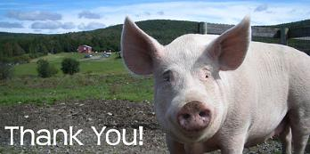 pig saying thanks for not eating him
