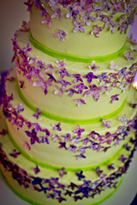Check out our Sticky Fingers Bakery vegan wedding cakes. It was spectacularly decorated and delicious.