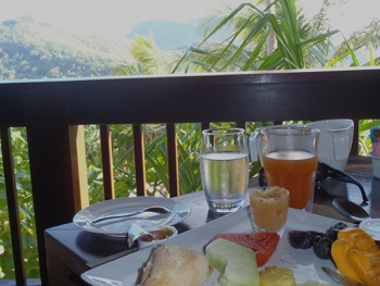 Our vegan breakfast in paradise.