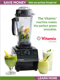 Vitamix Smoothies