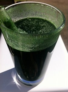 One of my green smoothies with spinach, spirulina, chia seeds, bananas, and pineapple.